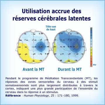 Graphique Méditation Transcendantale et cohérence cérébrale. Mobilisation des zones latentes du cerveau